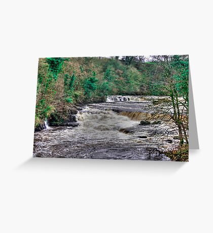 Aysgarth Falls  - Yorkshire Dales Greeting Card