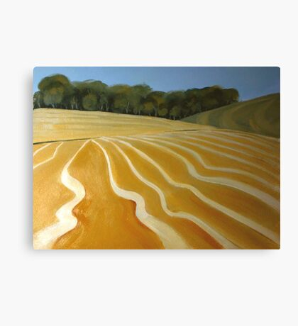 Patterns of the plow Canvas Print