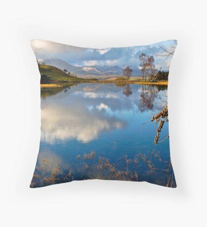 Wise Een tarn Throw Pillow