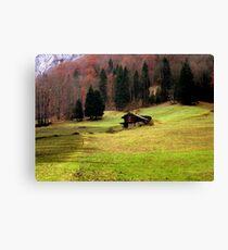 Suisse #4 Canvas Print