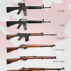 Service Rifles of Canada by nothinguntried