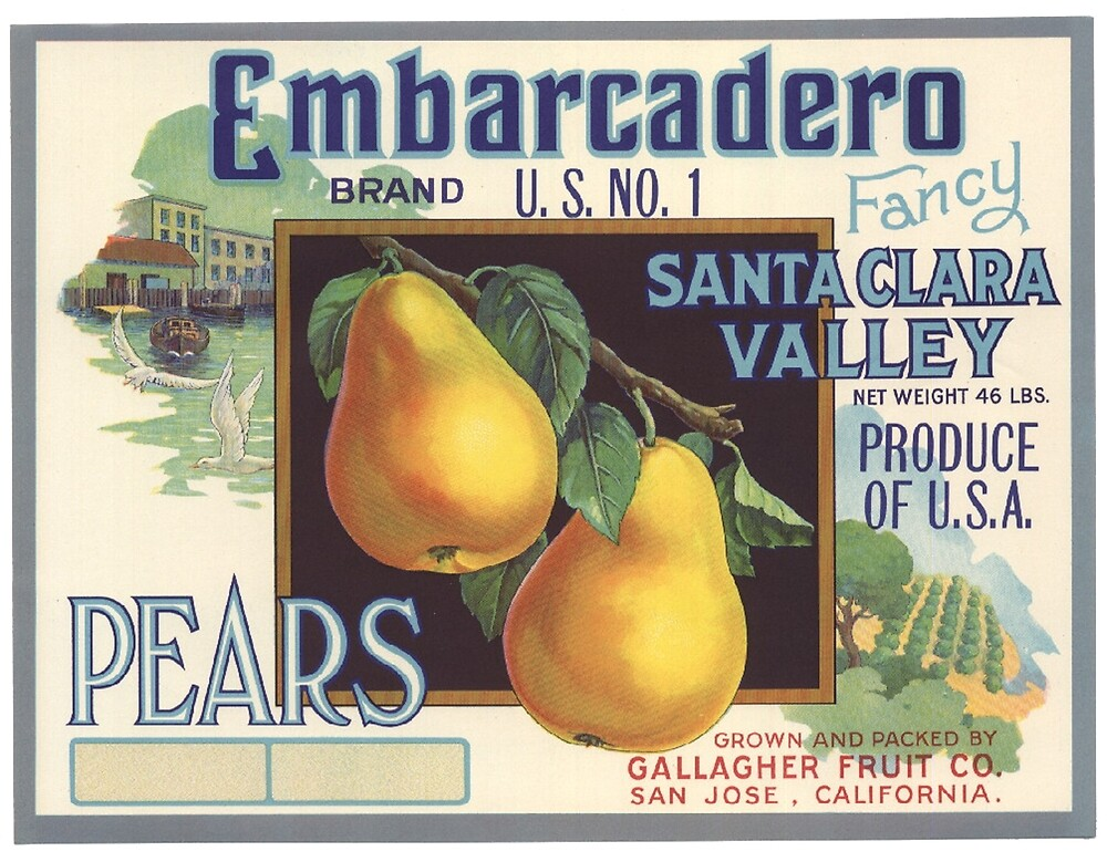 VINTAGE CALIFORNIA VEGETABLES PRODUCE FARM FOOD AD POSTER ART REAL CANVAS PRINT