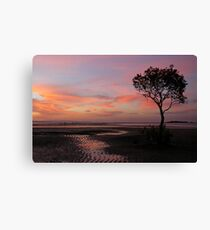 Whispers   of   Evening  -  Wellington Point Canvas Print