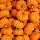 Pumpkin by Bonnie Foehr
