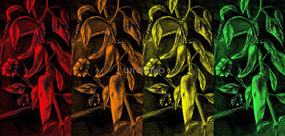 Four Hot Peppers I by wrathko