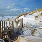 Peaceful Beach by photobear