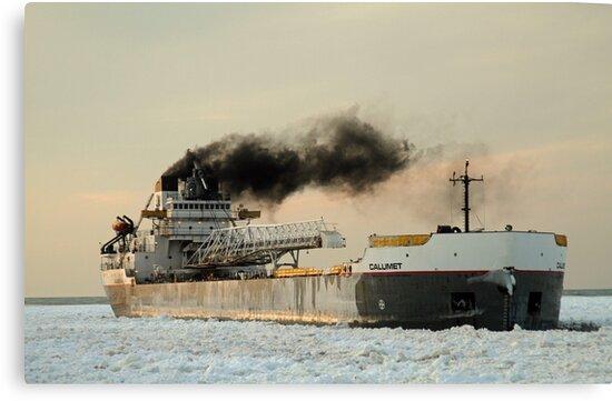 winter shipping by photobear