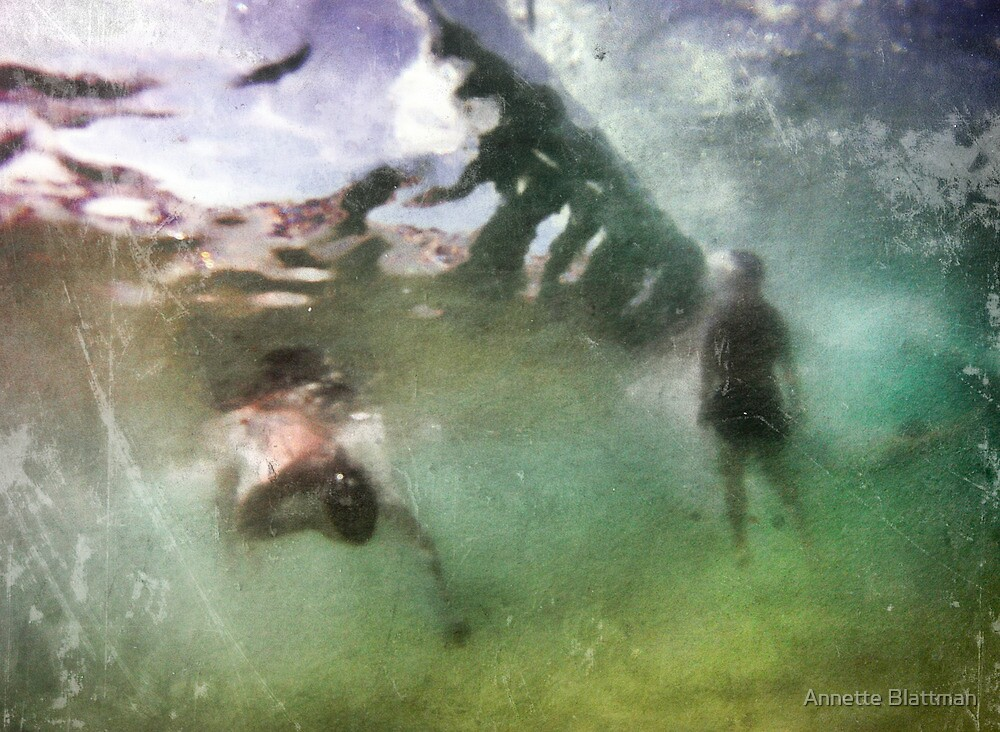 Hidden View 1 by Annette Blattman
