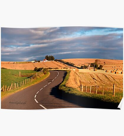 Winding Road Across the Golden Fields, Aberdeenshire, Scotland Poster