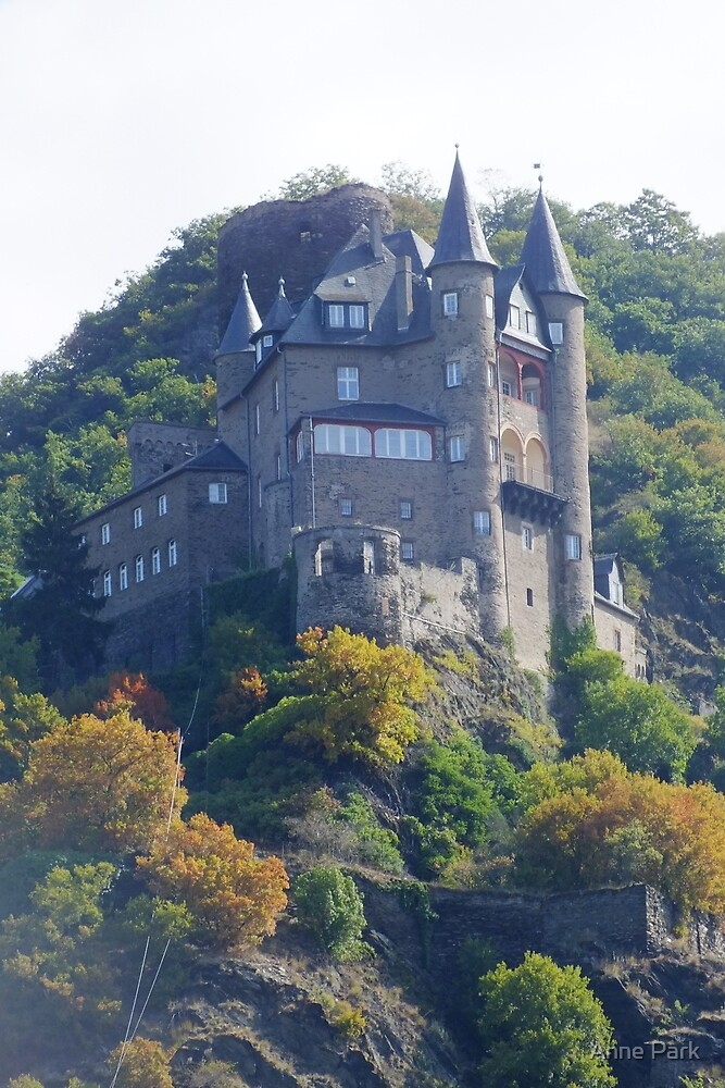 Rhine Valley Castle by Anne Park
