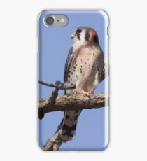 Kestrel  iPhone Case/Skin