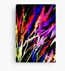 Splash of Colour Canvas Print