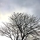 Crest of Crows by TerrillWelch