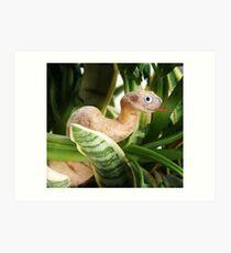 Cassava Snake Art Print