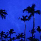 Late Blue Sky by malou