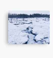 Cold Raw Nature Canvas Print