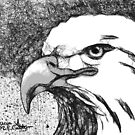 Eagle Scribble by Patricia Anne McCarty-Tamayo