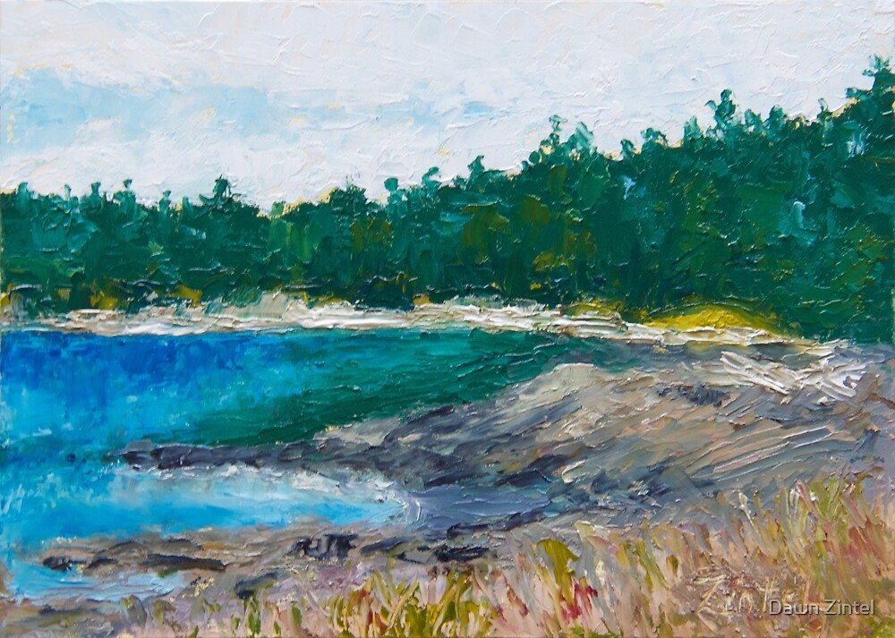 The Beach at Drumbeg by Dawn Zintel