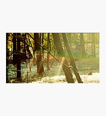 Childish Gambino Camp Photographic Print