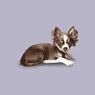Chihuahua by Elspeth Rose