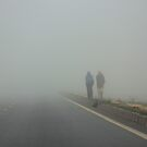 Fog... drive slow by Indrani Ghose