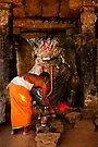 The Bull & The Priest by Vikram Franklin
