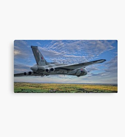 Born to Fly Canvas Print