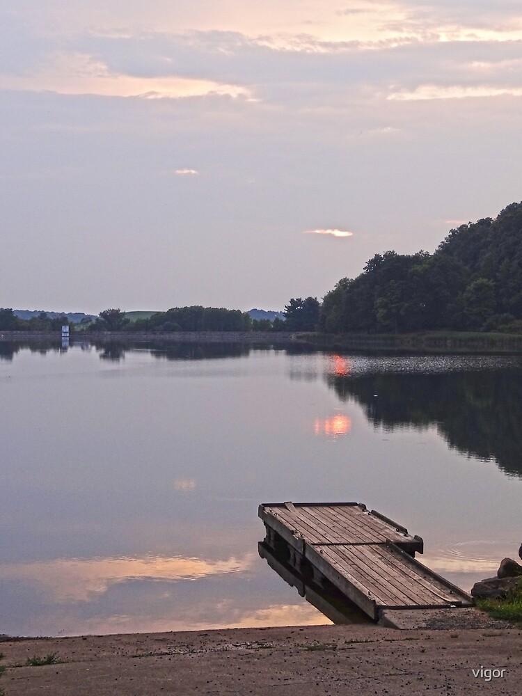 The Dock at the Lake by vigor