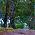 Wet Summer - Australian Landscapes by shadesofcolor