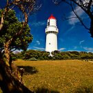 Cape Schanck Lighthouse by Greg Earl