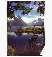 Milford Sound in Fiordland National Park Poster