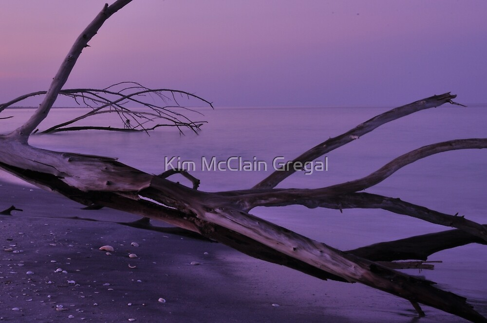 Before Sunrise at Stump Pass, As Is by Kim McClain Gregal