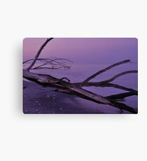 Before Sunrise at Stump Pass, As Is Canvas Print
