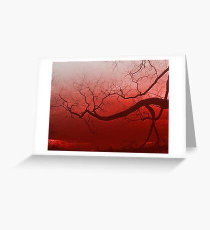 Summer tree in spain Greeting Card