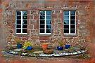 Delgatie Castle From the Backyard (near Turriff, in Aberdeenshire, Scotland) by Yannik Hay