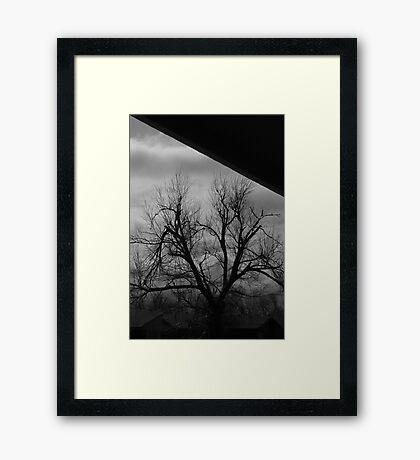 01-20-11  Safe On The Porch Framed Print