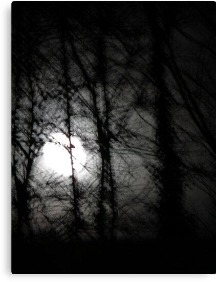 Beware the moon.... by David Carton