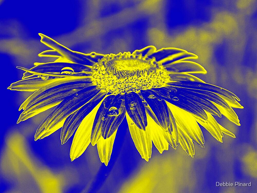 Blue Daisy by Debbie Pinard