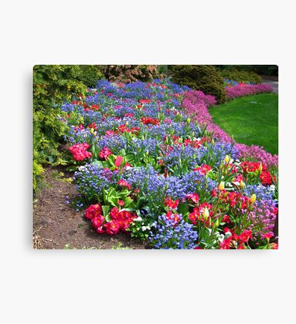 Memories of Late Spring Canvas Print