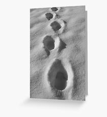 Snowy Footprints Greeting Card