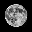 Blue Moon July 31, 2015 by Tom Gotzy