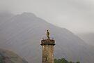 Glenfinnan Monument 2 (Loch Shiel, Glenfinnan, Scotland) by Yannik Hay