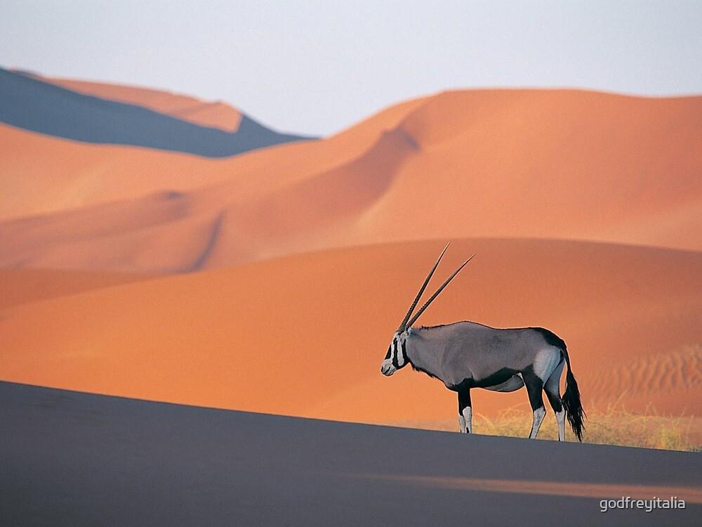 deserto by godfreyitalia