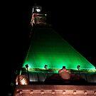 Green Roof by Rene Fuller