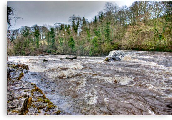 River Ure - Aysgarth-Yorks Dales by Trevor Kersley