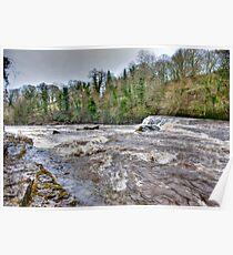 River Ure - Aysgarth-Yorks Dales Poster
