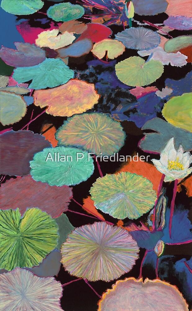 Ina's Magic by Allan P Friedlander