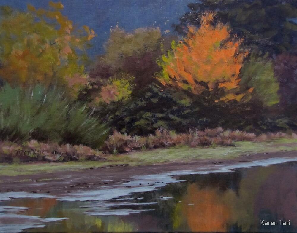 Autumn Pond by Karen Ilari