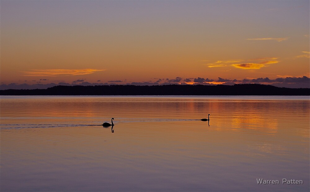 Morning Glide.....22-1-11. by Warren  Patten