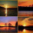 Sunset colours by Tarolino